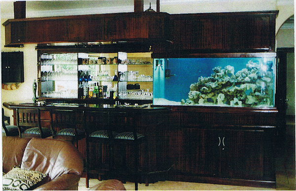 Bar with fish tank